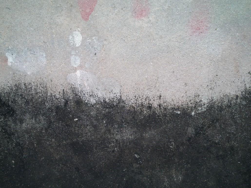 Odstraňování řas ze zateplené fasády